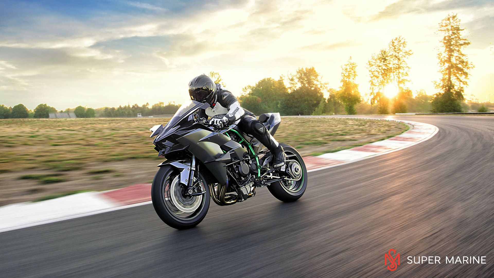 Мотоцикл Kawasaki Ninja H2R Серый 2020 - 9