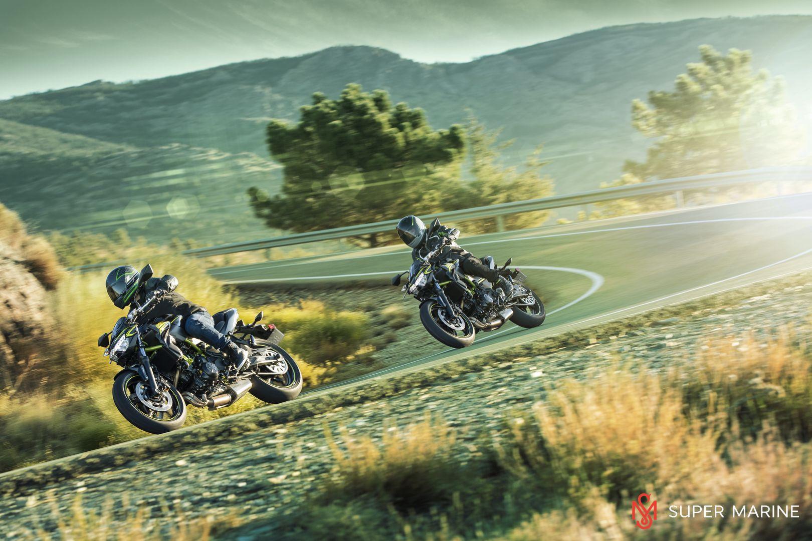 Мотоцикл Kawasaki Z650 ABS Белый 2020 - 20